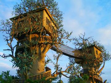 cool tree house desktop wallpaper share this awesome desktop wallpaper