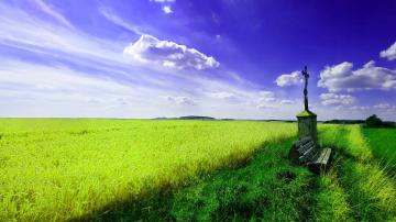 Beautiful Spring Landscape Wallpaper Widescree 14247 Wallpaper High