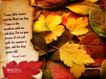 to a beautiful Saturday and your First Day of Autumn 2012 Enjoy