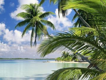 Florida beach 1600x1200