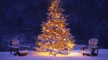 free christmas tree desktop wallpaper 2015   Grasscloth Wallpaper