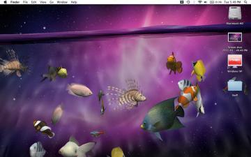 MacMacMacMac OS X