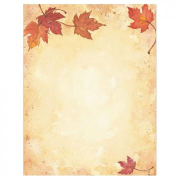 Fall Leaves Border Thanksgiving Fall Amp Autumn Stationery Computer