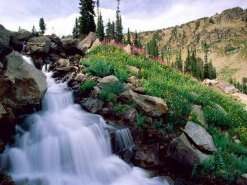 USA National Parks images National Parks wallpaper photos 5650273