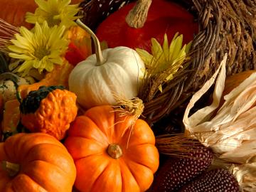 First day of fall is today What is your favorite part of fall