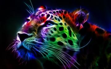Fractal Leopard hd desktop backgrounds HD Wallpaper