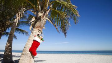 Alihoco blog 60 of Brits Dream of Christmas in The Sunshine