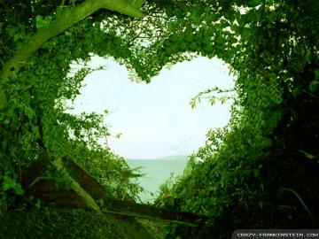 backgrounds wallpapers wallpapers for love natural wallpapers