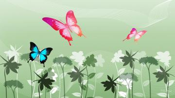 Colorful Butterfly Wallpapers 27 Background Wallpaper   Hivewallpaper
