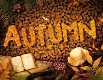 First Day of Autumn 2014 Wellcome Autumn Season Happy Holidays 2014