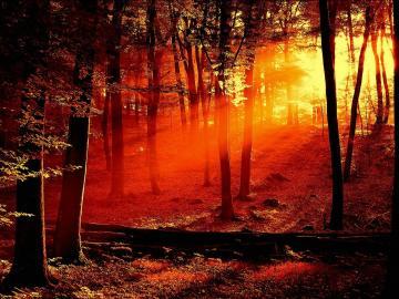 Desktop Wallpaper Sunset
