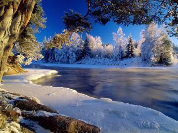 Winter wallpaper and other Nature desktop backgrounds Get
