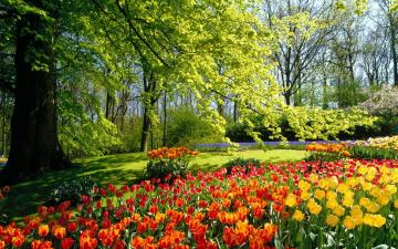 backgrounds9spring park wallpaper spring nature wallpaper widescreen