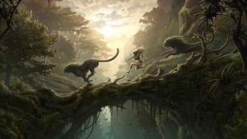 Widescreen Dreamy Fantasy Based Wallpapers 8885 Wallpaper Wallpaper
