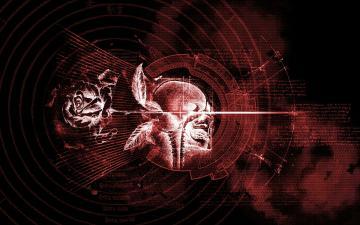 occult witch satanic satan evil gothic rose skull wallpaper background