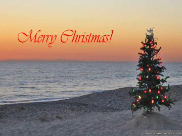 Wallpaper Christmas treeon beach island wallpapers