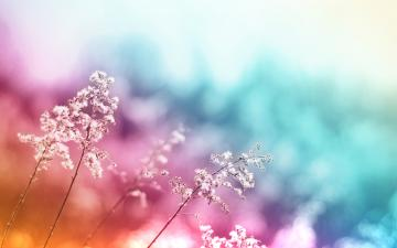 Abstract Colorful Desktop Background Wallpaper