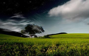 Nature Fantasy Pictures Widescreen Hd Desktop Wallpaper