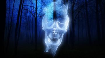 1366x768 Forest Skull Ghost desktop PC and Mac wallpaper