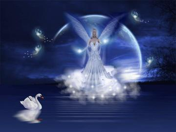 An Angels Love   Angels Wallpaper 13257278