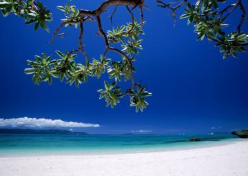 Beach Desktop Wallpaper Great World