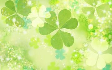 Clover wallpapers HD   260103