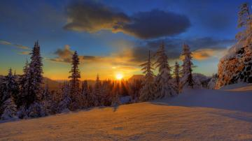 Download Winter Sunset HD Wallpapers for iPhone 5 HD