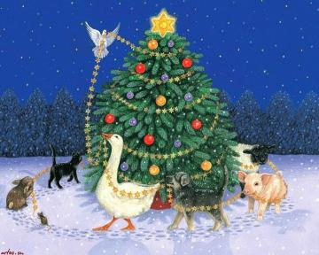 animals bird animal christmas Animals Other HD Desktop Wallpaper