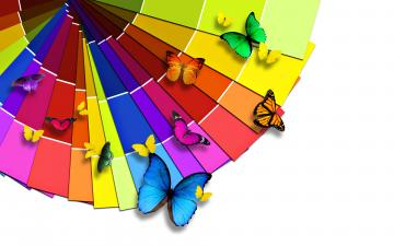 Colorful Butterflies Wallpapers HD Wallpapers