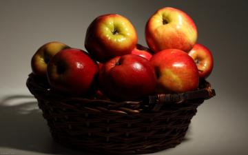 apple wallpaper basket wallpapers fruit food 1920x1200