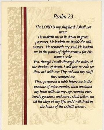 23rd psalm latin image search results
