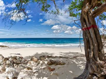 Caribbean Beach Wallpaper Welcome to Tropical Paradise