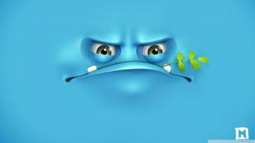 Funny Hd Wallpapers 1080p Grumpy wallpaper 1080p hd