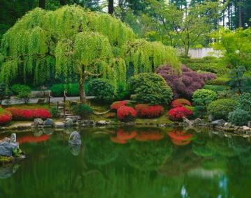 Pond Japanese Garden Wall Art   Asian   Wallpaper   by Murals Your Way