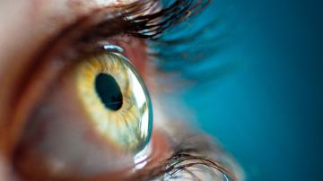 Eye Retina Iris HD Wallpaper 1080p HD Wallpapers