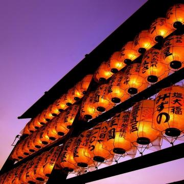 chooseallkindsofflowersblogspotcom201208oriental wallpaperhtml