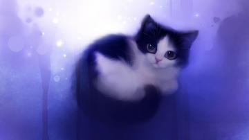 adorable cat wallpaper cute wallpaper share this cute wallpaper on