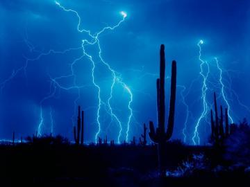 1152x864 Lightning and cactus desktop PC and Mac wallpaper