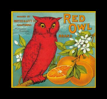 Red Owl Oranges   Vintage Fruit Crate Labels Wallpaper Image