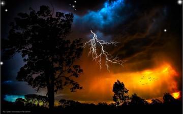 Download wallpaper storm lightning Trees desktop wallpaper in