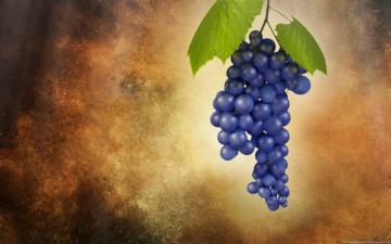 Sebastian Zielinski   3DCG Fruit Grapes   Full HD Wallpaper