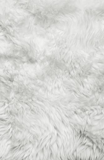White Fur Background Stock Photo Thinkstock