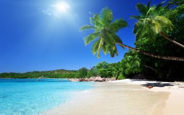 Beach Screensavers and Wallpapers Tropical Beach Scenes 1024640
