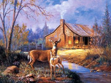 deer wallpapersdeer wallpaperwhitetail deer wallpaperdeer hunting