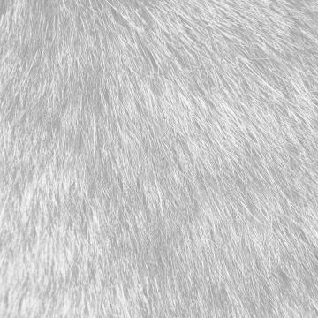 FREEIOS7 tabby cat fur white   parallax HD iPhone iPad wallpaper