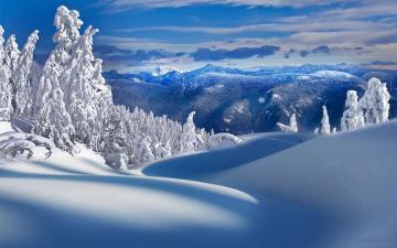 Download HQ Winter Wallpaper Num 7 1920 x 1200 7535 Kb