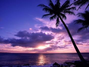 sunset beach wallpaper free desktop wallpaper download