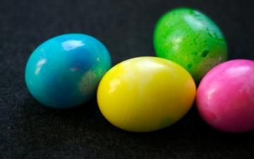 Download Easter 2013 HD Wallpapers for Android Tablets Tips and