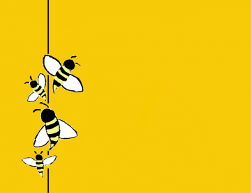 Bee Wallpaper Bucky Deviantart