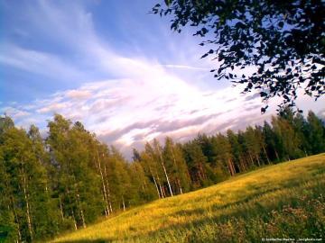 background Nature Scene Background HD Wallpaper for Desktop